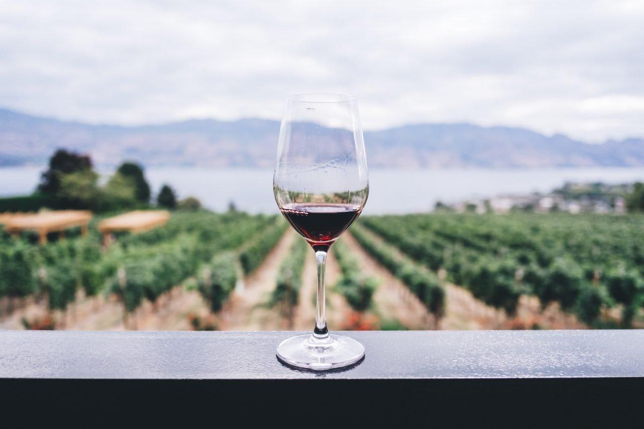 Nuevos tiempos Grandes vinos