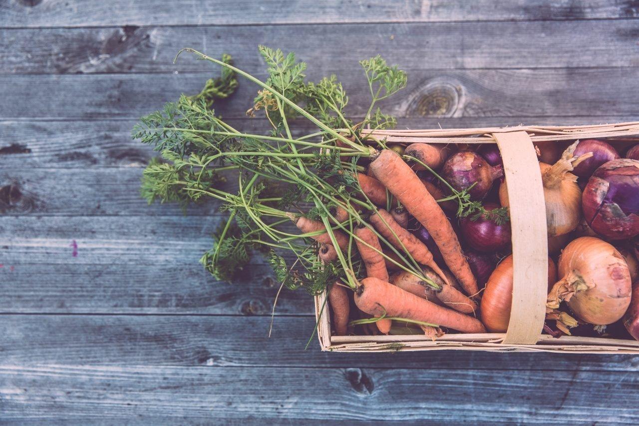 cesta fruta verdura