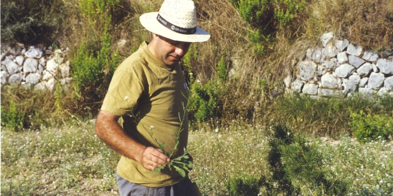 Vicente Todolí limones huerto