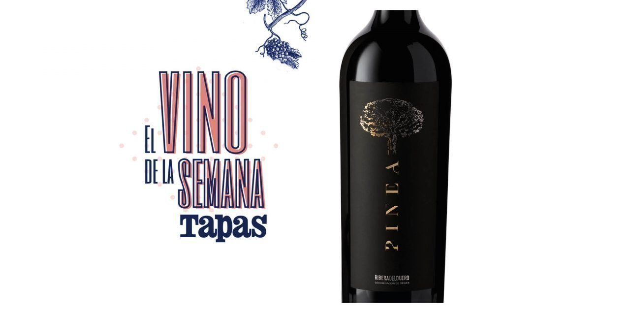 Pinea, un vino 100% Tempranillo de elaboración artesanal